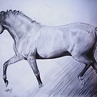 Trotting Horse by Felicity Deverell
