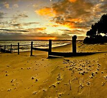 "Bribie island by Phineous ""Flash""   Cassidy"