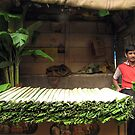Banana leaves by Hélène David-Cuny