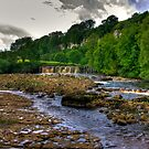 Wainwath Force - Keld 1 of 5 by Trevor Kersley