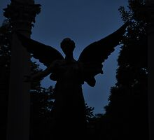 Beneficence in silhouette by mltrue