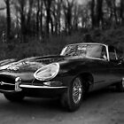 E Type in Mono by Matthew Walters