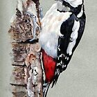 Woodpecker by Robert David Gellion