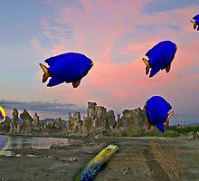 The Migration by photosbyflood
