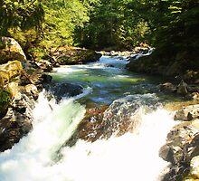 Deception Falls Lower Falls by Debbie Roelle