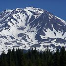 Mount Shasta by Borror