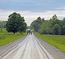 Country Road Encounter by marchello