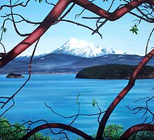 Manzanita View ( Mount Baker ) by A. F. Branco