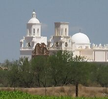 San Xavier from the Coop Farm by Michael Cohen