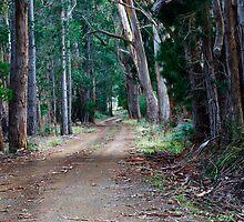 Igglesden Road by Chris Cobern