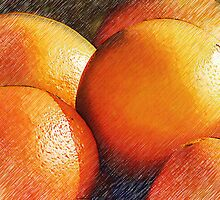 Oranges In Pencil by Dave Lloyd