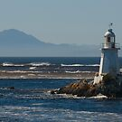 Entrance Island Lighthouse by Werner Padarin