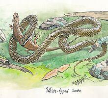 white lipped snake by SnakeArtist