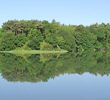 Irish Reflection by David O'Riordan