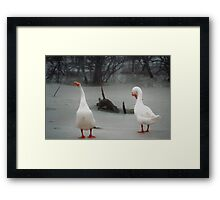 """072506-11 """"HEY !!!  STOP LAUGHING !!!  THAT WATER WAS COLD !!!! Framed Print"""