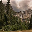 Yosemite Park by danapace