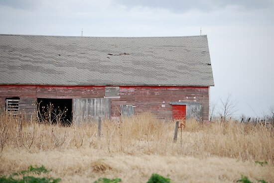 Rare Red Barn in Kansas by Suz Garten