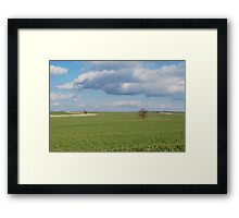 Big Sky and Kansas Wheat Framed Print