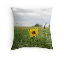 Lone Sunflower in Pasture Throw Pillow