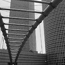 The Bridge by Danit Elgev