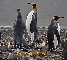 Secret Service by Penguinity