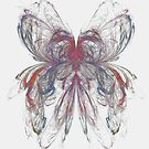 Butterfly Apophysis by Virginia N. Fred