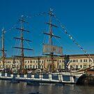 Sail Boston - Sagres at sunset by LudaNayvelt