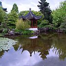 Dr Sun Yat Gardens, Vancouver, BC, Canada by AnnDixon