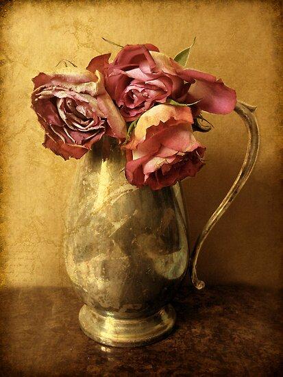 Madeira Roses by Jessica Jenney