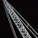 Eclectric Crane by Daneann
