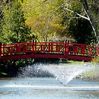 red bridge by tego53