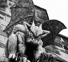 Gargoyle by Christine Casano