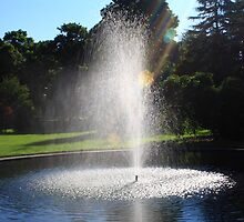 Fountain Shot by AntonLee