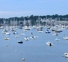 Marblehead Harbor by AntonLee