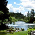Waikato River by Cathryn Swanson