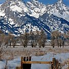 Grand Teton &amp; Irrigation Ditch by A.M. Ruttle