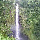 Akaka Waterfall by alleycatshirts