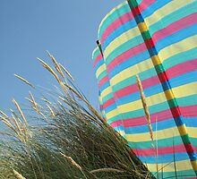 Windbreak at Camber Sands by Darren Buss