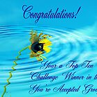 Top Ten Challenge Winner by R&PChristianDesign &Photography
