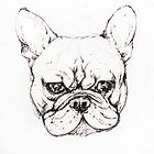 French Bulldog puppy by Roz McQuillan