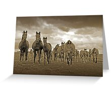 The Gang is all Here ! Greeting Card