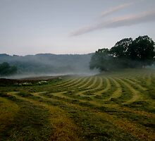 Esthwaite Fields by Simon Hathaway