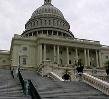 steps to the capitol by 1busymom