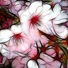 Pink Rhapsody by Andrea Ida Rausch