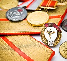 USSR army officer medals and badges by yurix