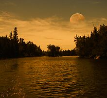 Pale Moon Rising by AlienVisitor