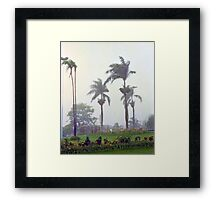 Brazilian Monsoon Framed Print