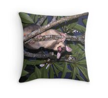 Visiting possum Throw Pillow