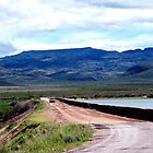 Crossing The Dam At Balmorhea Lake by R&PChristianDesign &Photography