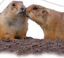 Prairie Dog Kiss Sticker